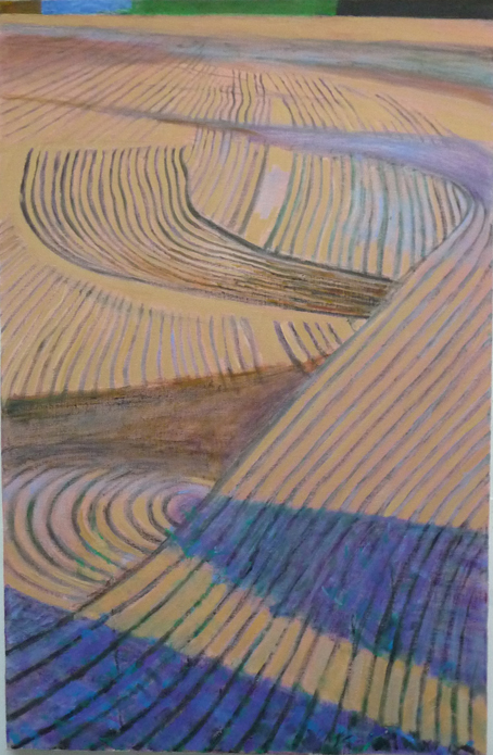 Meander Ploughing final copy